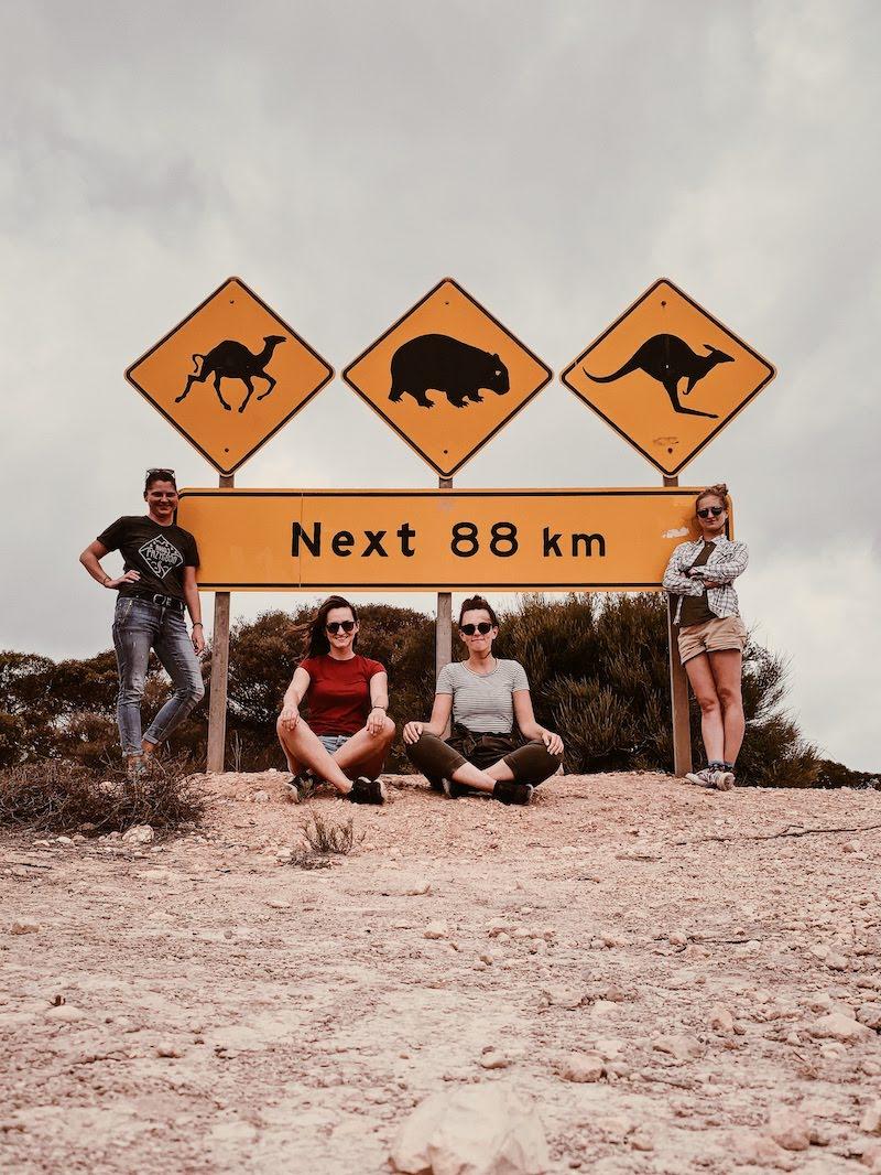 Wyprawa grupowa w marcu 2020 - kangury, wombaty, wielbłądy