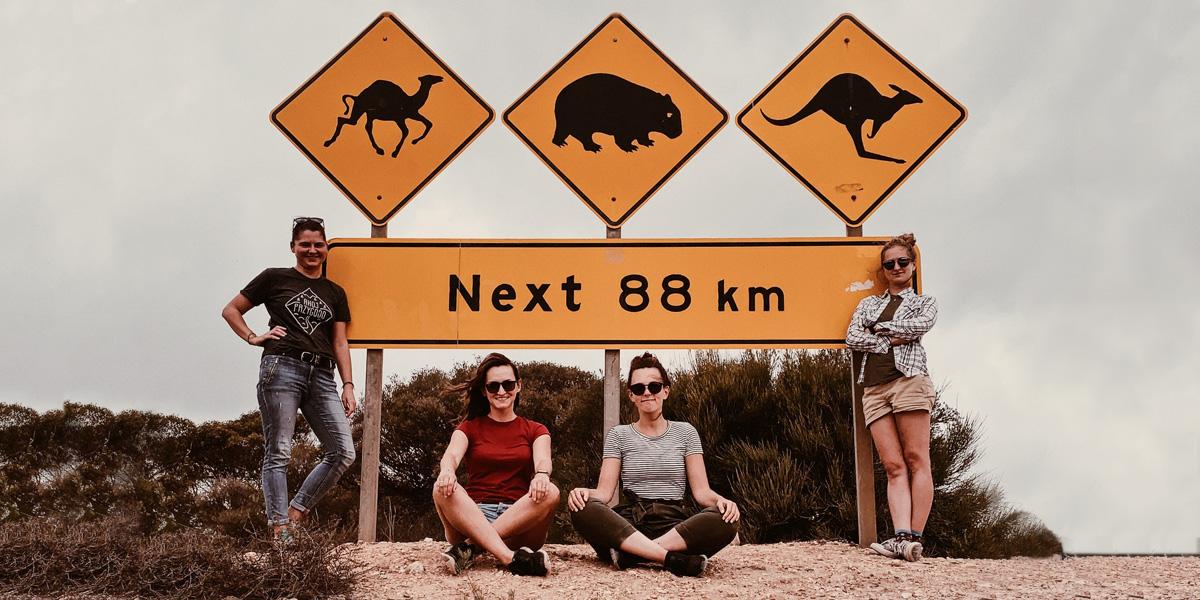 Znak informujący że na odcinku 88km można spotkać wielbłądy, kangury oraz wombaty